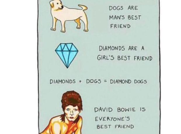 Bowie meme