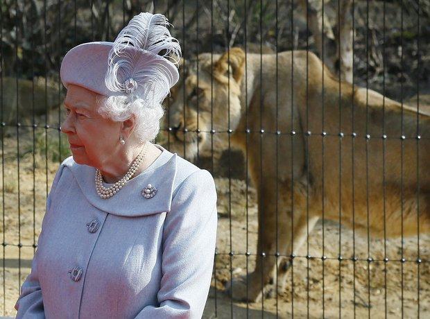 Britain Royal Zoo Visit