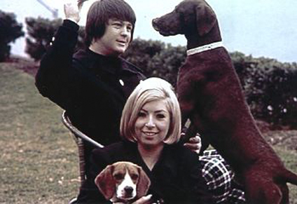 brian wilson dogs