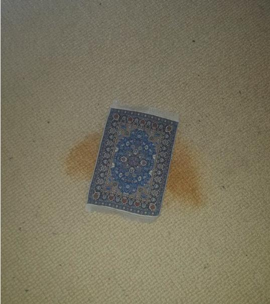 man buys rug online
