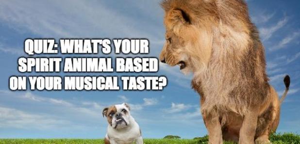 Animal Clues Quiz